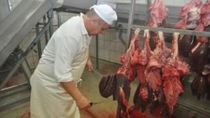 Abattage rituel de la viande à l'abattoir de Zaklady Miesne Mokobody près de Varsovie, en 2011. (Crédits : autorisation de Zaklady Miesne Mokobody, via JTA)