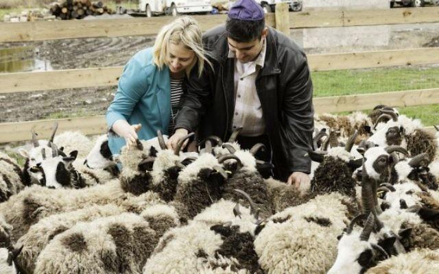 Gil et Jenna Lewinsky nourrissent leurs moutons dans leur ferme d'Abbotsford, Vancouver, au Canada, en 2016. (Crédit : Mustard Seed Imaging)