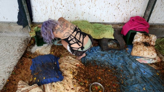 L'activiste animalière Nora Lifschitz nettoie la cage des chauves-souris frugivores (Rousettus aegyptiacus) dans son nouveau refuge pour chauves-souris de la vallée d'Elah, le 22 juin 2016. (Crédit : AFP/Menahem Kahana)