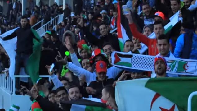 Des fans algériens de football encouragent la Palestine dans une rencontre amicale entre les deux pays le 17 février 2016 (Crédit : capture d'écran YouTube)
