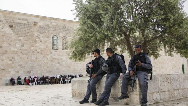 Des policiers au complexe du mont du Temple, dans la Vieille Ville de Jérusalem, le 10 avril 2016. (Crédit : Corina Kern/Flash90)