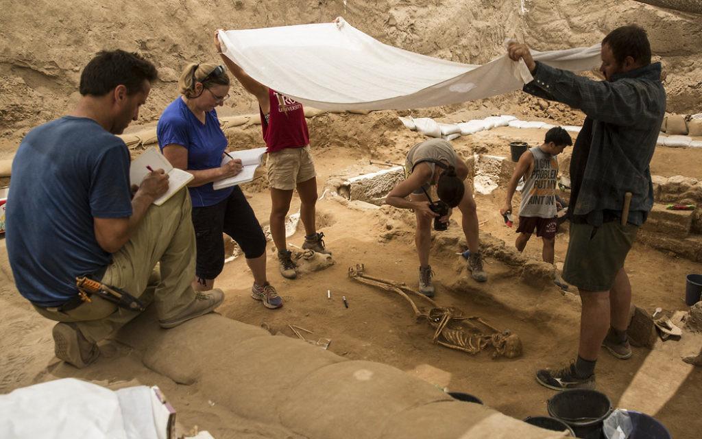 Des archéologues sur un site de fouilles à Ashkelon (Crédit : autorisation Leon Levy Expedition)