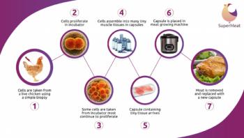 Le processus de production de SuperMeat (Crédit : autorisation de SuperMeat via JTA)