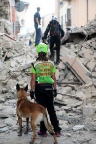 Des sauveteurs cherchent des victimes parmi les décombres des maisons après un fort tremblement de terre à Amatrice, en Italie, le 24 août 2016. (Crédit : AFP/Filippo Monteforte)