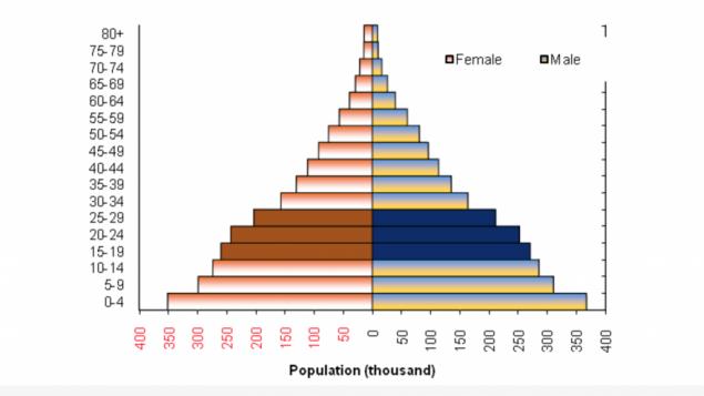 Une graphique montrant la démographie des Palestiniens au courant de l'année 2016 (Crédit : autorisation PCBS)