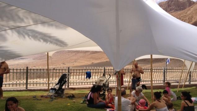Le kibboutz Ein Gedi, près de la mer Morte. (Crédit : Amanda Borschel-Dan/Times of Israel)