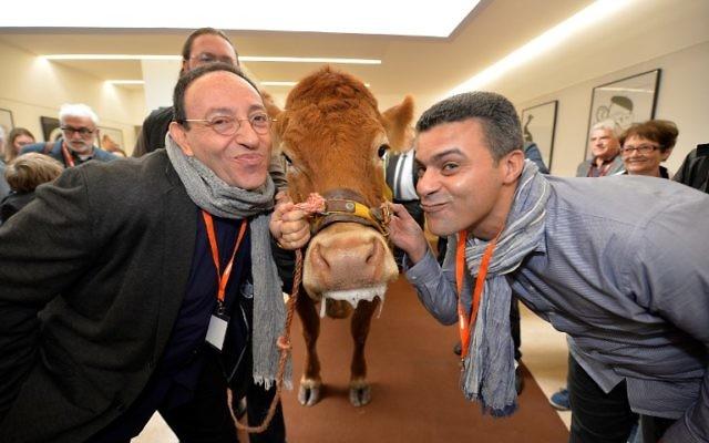 Le dessinateur belge et israélien Michel Kichka (à gauche) et le dessinateur marocain Khalid Gueddar posent avec Justine, une vache du Limousin, après avoir reçu le Prix de l'humour vache au 35e Salon de la caricature, du dessin de presse et d'humour à Saint-Just Le Martel, dans le Limousin, le 8 octobre 2016. (Crédit : Pascal Lachenaud/AFP)