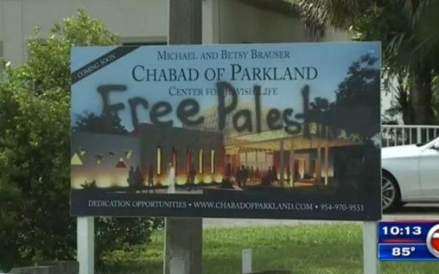 Graffitis devant la synagogue Habad à Parkland, en Floride, le 5 octobre 2016 (Capture d'écran : WSWN-TV)