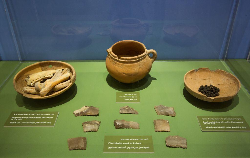 De la poterie et des vestiges domestiques de Khirbet Qeiyafa, y compris des noyaux d'olives calcinés exposés au Bible Lands Museum. (Crédit :  Oded Antman / Bible Lands Museum)