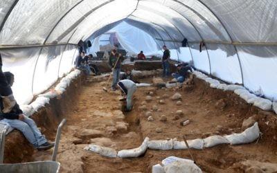 Le site d'excavation dans le Russian Compound. On peut voir les pierres sur le sol, qui sont les preuves tangibles de la bataille (Crédit : Yoli Shwartz / Israel Antiquities Authority)