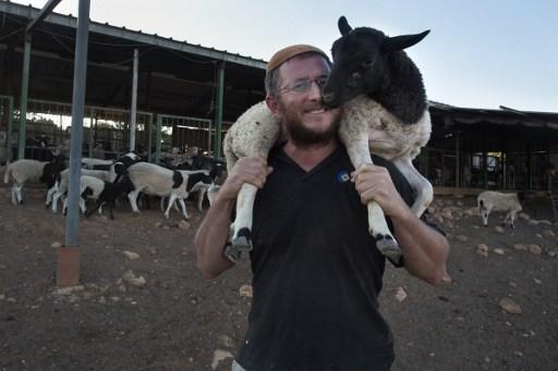 Nachum Schwartz, Israélien de 42 ans, installé dans l'avant-poste d'Amona, dans sa ferme, le 7 septembre 2016. (Crédit :AFP/Menahem Kahana)