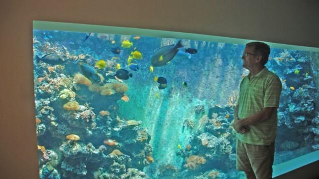 Eli Fruchter devant ce qui est peut-être le plus grand aquarium récifal domestique dans son salon à Haïfa. (Crédits : Miriam Nahum/Times of Israel)
