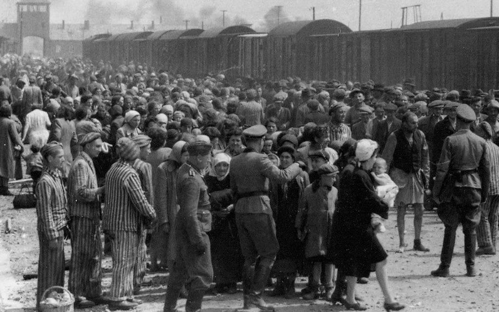 Juifs hongrois sur la Judenrampe (rampe juive) après le débarquement des trains à Auschwitz-Birkenau, mai 1944. Vers la droite ! signifiait que la personne avait été choisie pour travailler ; Vers la gauche ! signifiait la mort dans les chambres à gaz. (Crédit : De l'album d'Auschwitz)