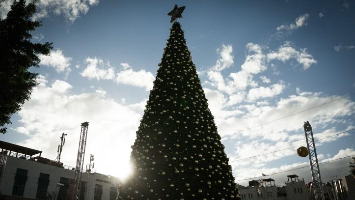 L'arbre de Noël de 17m de haut de la place de la Mangeoire à Bethléem, le 11 décembre 2016. (Crédit : Sebi Berens/Flash90)