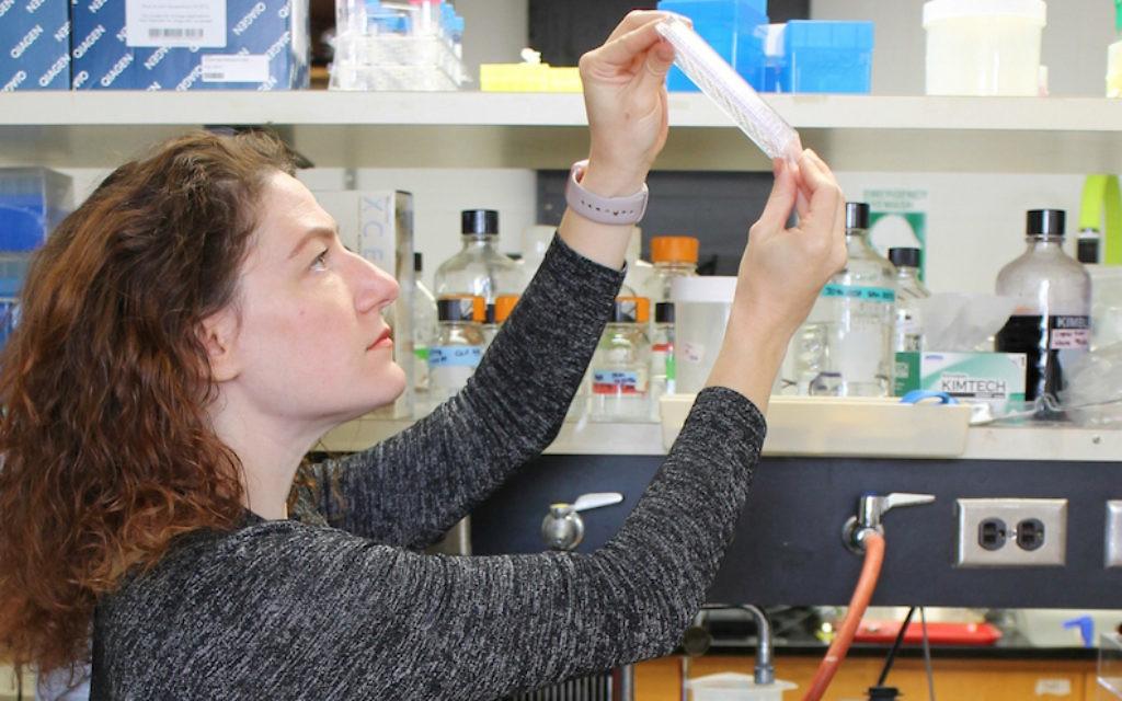 Joanna Slusky, professeur de biosciences moléculaires et de biologie informatique à l'Université du Kansas au travail dans son laboratoire. (Crédit :  Sarah Mullinax/via JTA)