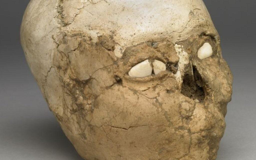 Un crâne enduit de plâtre datant du Néolithique, il y a 9 500 ans de la collection du British Museum. (Crédit : British Museum)