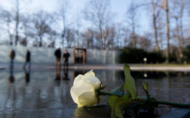 Une rose blanche déposée au mémorial de Berlin lors d'une cérémonie de commémoration du 27 janvier 2017, journée internationale du souvenir de l'Holocauste. (Crédit : AFP /dpa / Monika Skolimowska / Allemagne OUT)