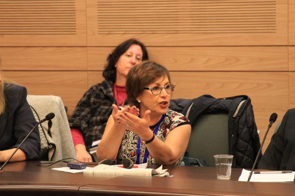 Harriet Schleifer, présidente du conseil d'administration de l'AJC, pendant une réunion de la commission de l'Immigration, de l'Intégration et de la Diaspora de la Knesset, le 11 janvier 2017. (Crédit : AJC)