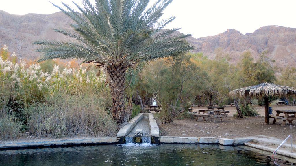 Une piscine construite pour les visiteurs d'Einot Tzukim, le 3 janvier 2017. Le parc a fermé l'accès à ses plages en 2000, mais le nombre de visiteurs a sans cesse augmenté depuis que le programme de pompage a été mis en place. (Crédit : Melanie Lidman/Times of Israël)
