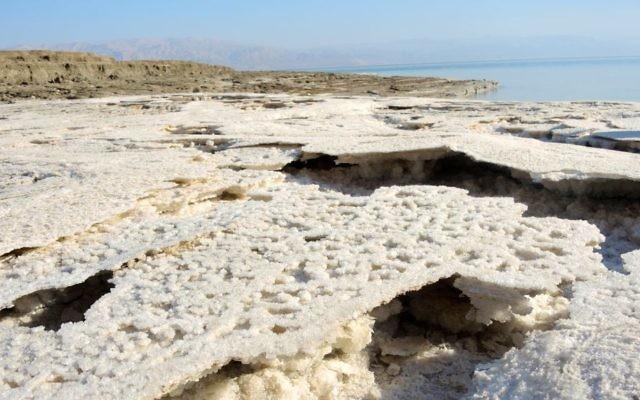 Le littoral en recul laisse une fine croûte de sel alors que le niveau de la mer Morte baisse de plus d'un mètre par an, comme dans cette zone photographiée le 11 janvier 2017. (Crédit : Melanie Lidman/Times of Israël)