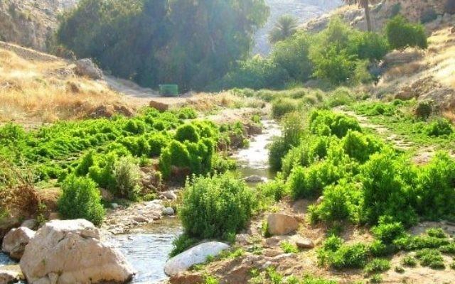 Nahal Prat (Wadi Kelt) est une réserve naturelle du désert de Judée. Illustration. (Crédit : domaine public/Wikipedia)