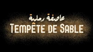 Capture d'écran de la bande annonce du film 'Tempête de sable' de la réalisatrice israélienne, Elite Zexer, sorti dans les salles françaises le 25 janvier 2017 (Crédit : Capture d'écran YouTube)