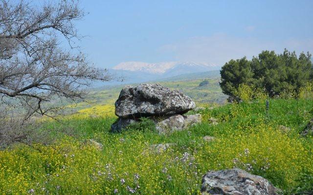 Le dolmen âgé de 4 000 ans découvert en Galilée. (Crédit : Gonen Sharon/College Tel Hai)