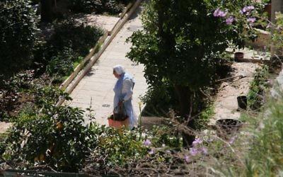 Le jardin du Patriarcat latin de Jérusalem, réinstauré dans la ville par le pape Pie IX en 1847. (Crédit : Shmuel Bar-Am)
