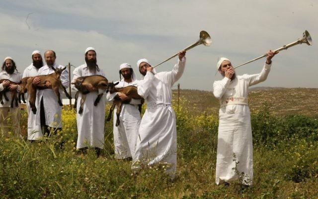 Habillés de blanc et soufflant dans des trompettes 'argent, ces prêtres en formation se préparent au sacrifice de Pessah. (Crédit : Institut du Temple)