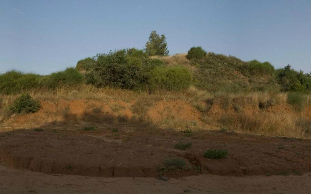 La colline rouge vue du kibboutz Givat Brenner qui a donné le nom à la société de biotechnologie RedHill (Crédit : Autorisation)