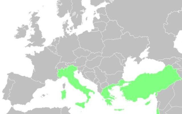 En vert, les pays de la 8e circonscription des Français de l'étranger: Chypre, Grèce, Israël, Italie, Malte, Saint-Marin Saint Siège et Turquie (Crédit: Wikimedia Commons/Kyat02)