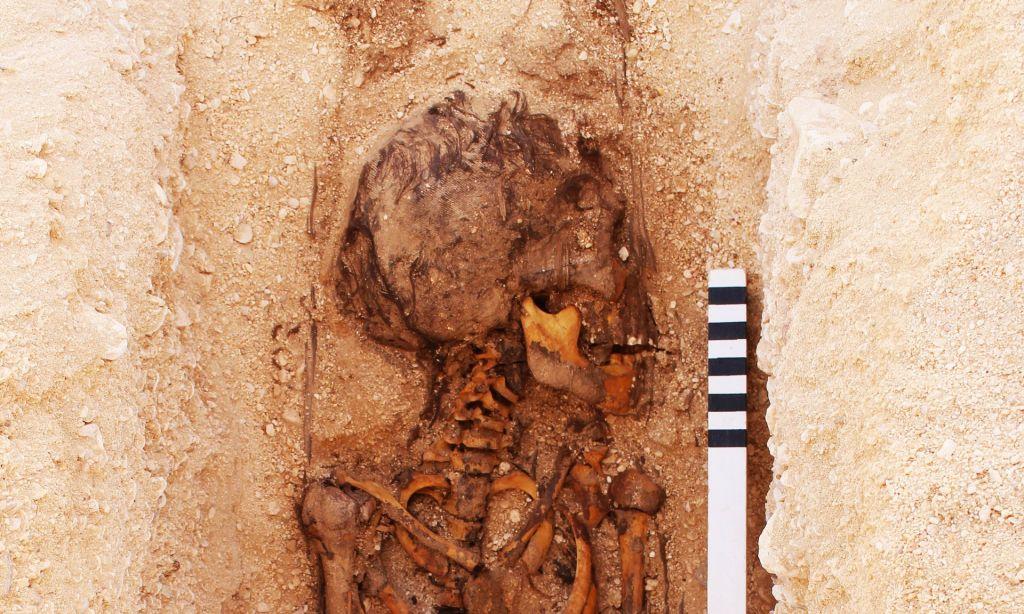 Le squelette jeune découvert au cimetière des Tombes du Nord, Amarna, en Égypte (Crédit : Mary Shepperson / Autorisation du projet Amarna)