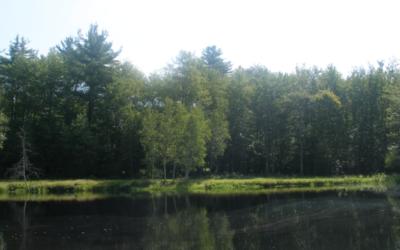 Vue sur le Swan Lake, New York, où se trouve le Camp Kasho. (Crédit : Wikimedia Commons/JTA)