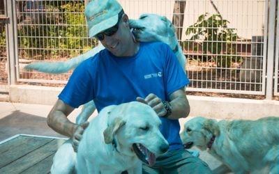 Le dresseur canin Yariv Melamed au Centre de chiens-guides d'aveugles israélien en mai 2017 (Crédit : Luke Tress/Times of Israel)