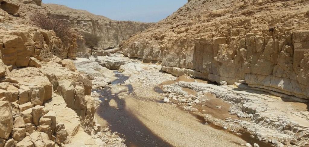Les déchets acides, qui contiennent aussi des métaux lourds, se sont propagés sur plus de 20 km le long du lit du cours d'eau après la fuite du 30 juin 2017. (Crédit : George Norkin/Autorité de la nature et des parcs)