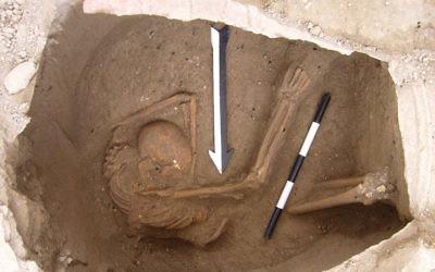 La dépouille d'un individu analysée durant l'étude sur les Cananéens, datant d'environ 1600 ans avant l'ère commune (Crédit : Dr. Claude Doumet-Serhal/Wellcome Trust Sanger Institute)