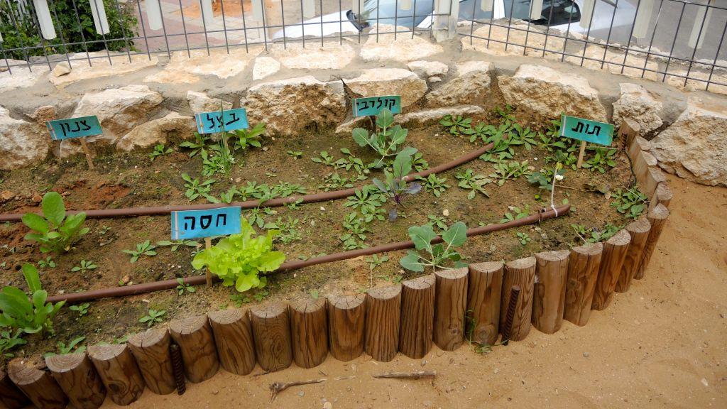 Un jardin à Modiin Ilit, le 22 mars 2017. (Crédit : Melanie Lidman/Times of Israël)