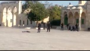 Les agents de police autour du corps d'un terroriste qui était l'un des trois hommes responsable d'un attentat à l'arme à feu qui a grièvement blessé deux Israéliens à proximité du mont du Temple dans la Vieille ville de Jérusalem, le 14 juillet 2017 (Capture d'écran)