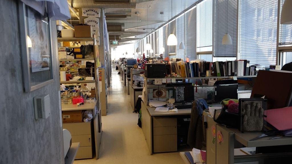 Shoichet a dans son équipe 25 chercheurs dans un espace partagé de laboratoire avec d'autres scientifiques travaillant sur différents projets (Crédit : Dana Wachter/Times of Israel)