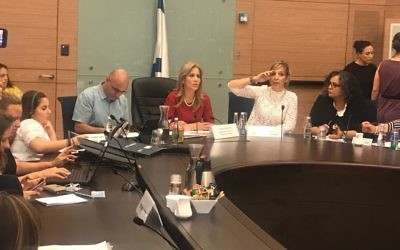 Emi Palmor, deuxième à droite, directrice générale du ministère de la Justice, devant une commission de la Knesset, le 10 juillet 2017. (Crédit : autorisation)