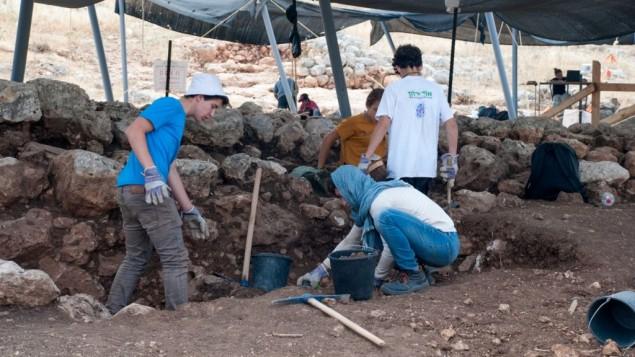 Des dizaines de lycéens prennent part aux fouilles organisées à Rosh HaAyin,durant l'été 2017. (Crédit : Gili Stern, IAA)