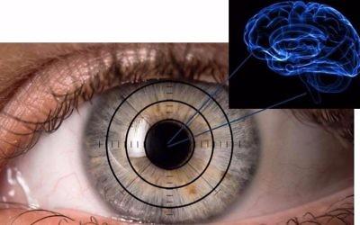 L'œil est comme une fenêtre de notre cerveau. L'équipe médicale de Sheba cherche les signes de la maladie d'Alzheimer dans nos yeux (Crédit : Autorisation Ifat Sher)