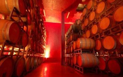 Des barils de vin à la cave de Psagot, située dans une implantation du même nom sur les collines du centre de la Cisjordanie (Crédit :  cave de Psagot /JTA)