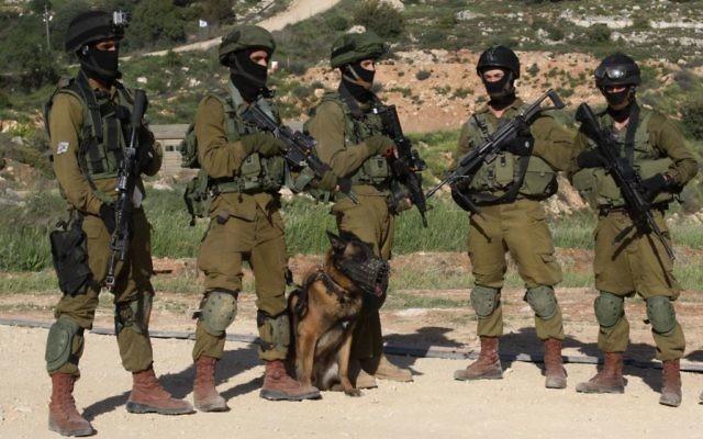 Soldats israéliens avec un chien militaire formé pendant un exercice, le 2 avril 2014. (Crédit : Gershon Elinson/Flash90)
