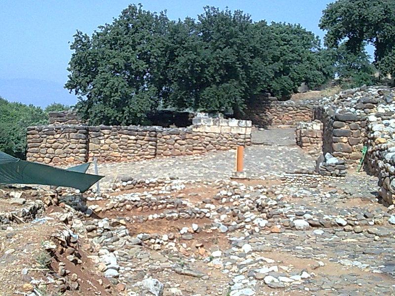 Un versant où se trouvent les vestiges des murs en pierre de Tel Dan, cet endroit où Lawrence Mykytiuk a trouvé une référence au roi David. (Domaine public)