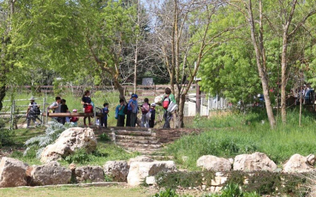 Près de 92 % d'Israéliens sont des citadins, les jardins œuvrent pour les reconnecter à la flore du pays. (Crédit : Shmuel Bar-Am)