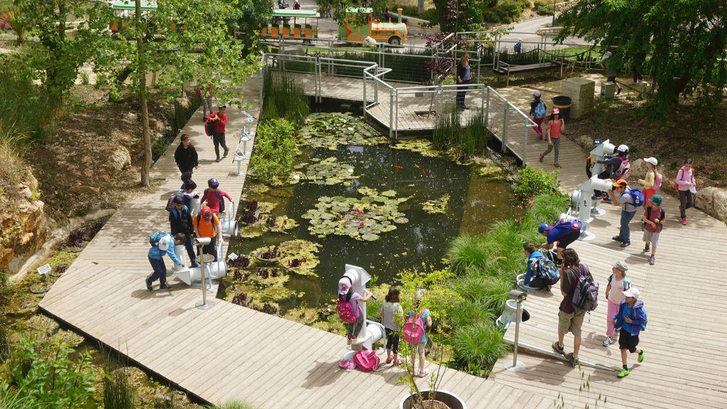 Le Parcours Découverte (Discovery Trail) est un endroit du Jardin Botanique destiné aux enfants. (Crédit :(Judith Magnes)