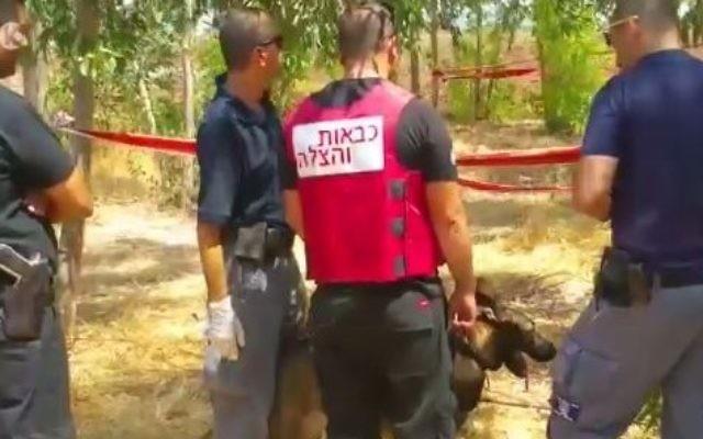 Policiers sur la scène de la découverte d'un corps brûlé à côté d'une voiture carbonisée, près de Tel Adashim, le 27 août 2017. (Crédit : capture d'écran Dixième chaîne)