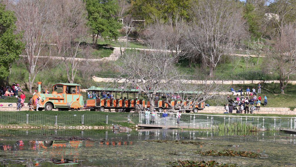 Plus de 1 200 écoliers visitent chaque semaine les Jardins Botaniques de Jérusalem pour y planter des fleurs et des légumes. (Crédit : Shmuel Bar-Am)