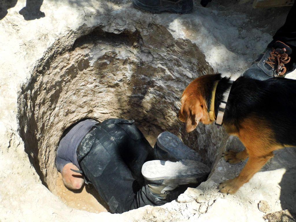 Un chien regarde David Tanami, archéologue de l'Autorité israélienne des Antiquités, s'activer autour de l'ouverture étroite d'une tombe pour en sortir une jarre sur un site funéraire cananéen aux abords du zoo biblique de Jérusalem (Crédit : Shua Kisilevitz, Autorité israélienne des antiquités)